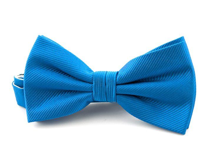 blauwe vlinderdas